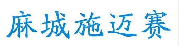 麻城施迈赛工业自动化有限公司