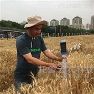 稻麥株高測量儀