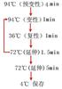 狄斯瓦螨PCR检测试剂盒图片