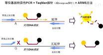 解脲脲原体PCR检测试剂盒哪里有买