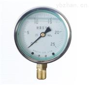 YTN系列耐震壓力表