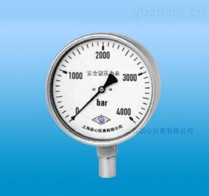 廠家直銷安全型特種壓力表