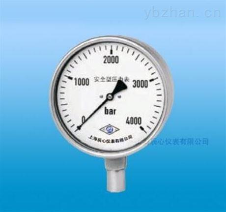 厂家直销安全型特种压力表