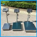 交直流兩用工業記重能稱200公斤臺式電子秤