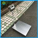 XK3190-A12E電子秤100公斤工業記重電子磅秤