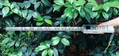 TOP-1000 植物冠层分析仪