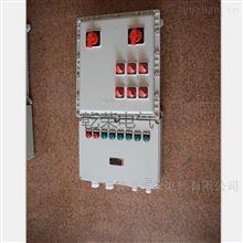 BXMD防爆多回路照明配电箱