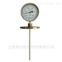 WSSF系列防腐型双金属温度计