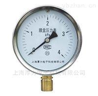 YE-100B系列膜盒压力表