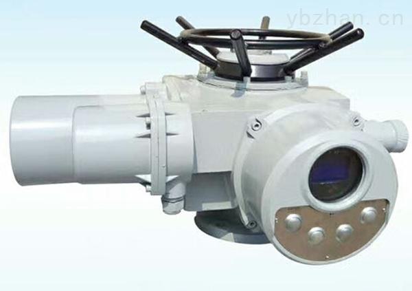 DZW15-24-A00-DS1电动装置