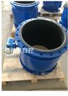 FXAO-LDE硝酸液体流量计--厂家