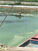 鱼塘增氧风机