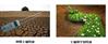 种植土验收报告怎么做,哪里能提供