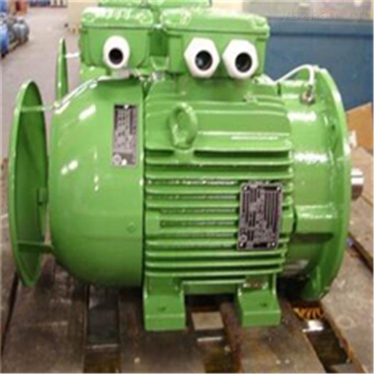 荷兰EN motoren Nijmegen不锈钢电机