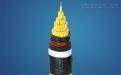 儀表用銅帶屏蔽電纜KJYVP2 5*2*0.75