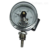 WSSX-461電接點雙金屬溫度計