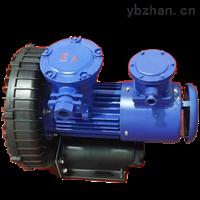 防腐防爆旋渦氣泵