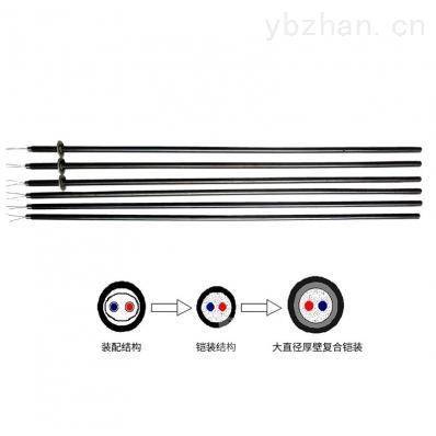 WR-H型 大直径厚壁铠装热电偶