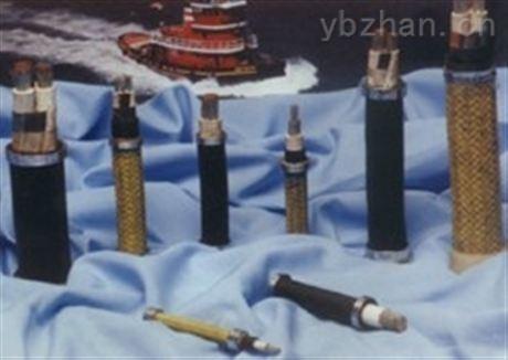 安徽天康订做聚氯乙烯绝缘和护套船电力电缆