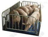 养殖畜牧秤厂家直销,无线小地磅带围栏