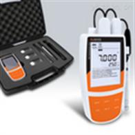 Bante900P般特BANTE便携式pH离子电导率溶解氧仪