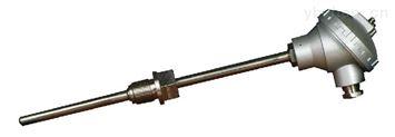 鋼水專用快速熱電偶測溫儀