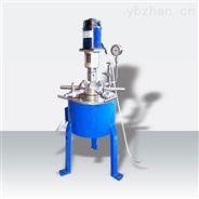 高壓反應釜CJF-(0.1-10)L
