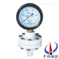 YTP-100S防强腐全塑隔膜压力表