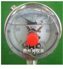 YTP供應YTP系列衛生型隔膜壓力表價格