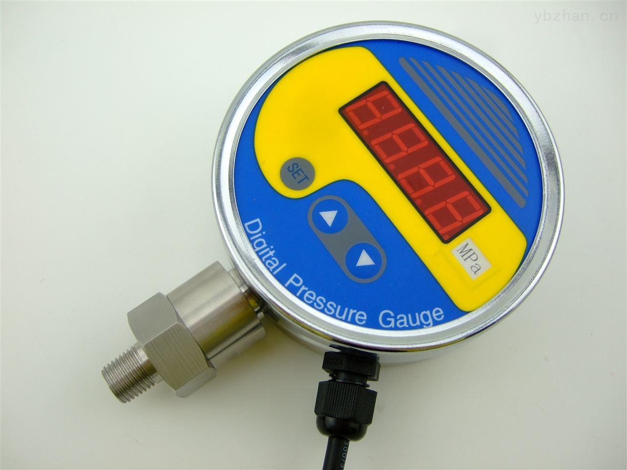 宜兴专业数字压力表数字压力表型号PG-100