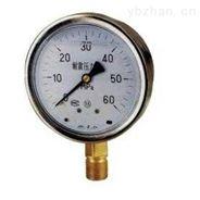 精密不锈钢耐震压力表