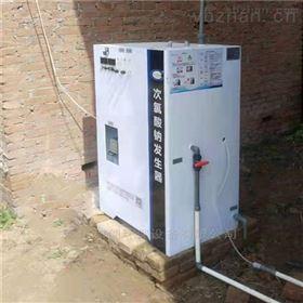 HC农村饮水消毒设备100g/h次氯酸钠发生器价格
