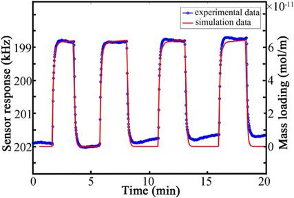 声学所建立声表面波气体传感器实时响应仿真模型