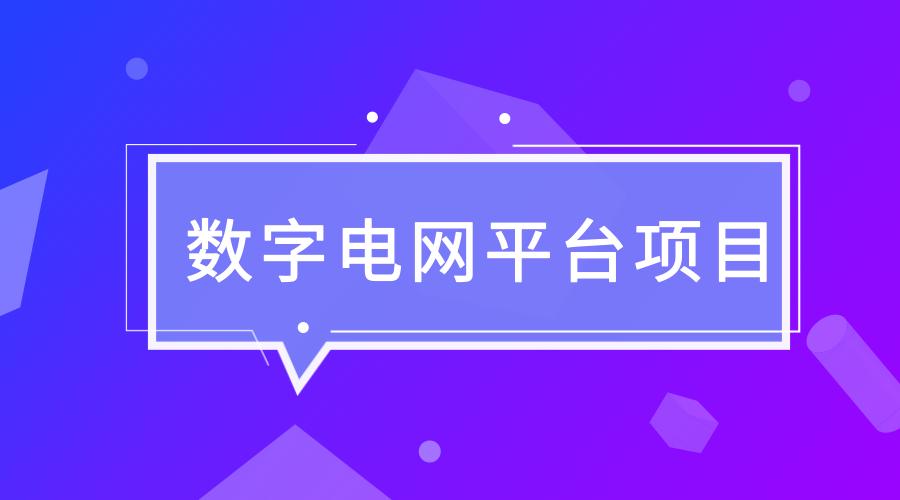 海南电网公司数字电网平台项目通过专家评审