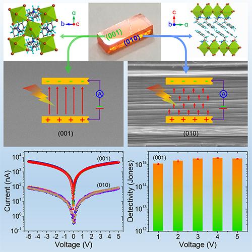 我国在二维钙钛矿单晶探测器研究方面取得新进展