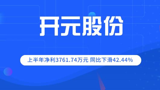 开元股份2019年上半年净利润3762万元