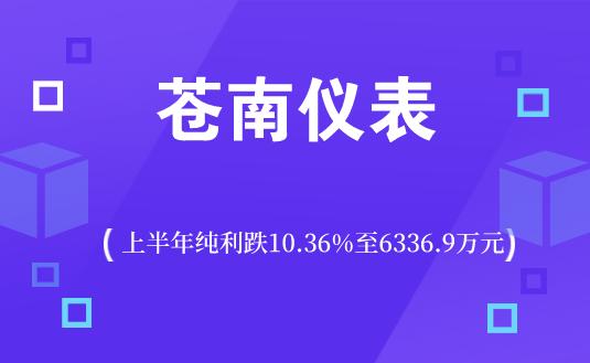 蒼南儀表上半年純利跌10.36%至6336.9萬元
