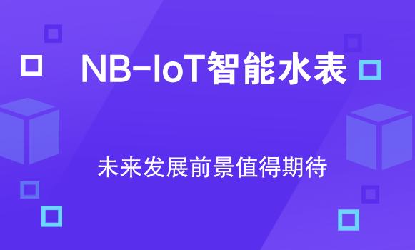 從上市水表企業財報看NB-IoT智能水表發展前景