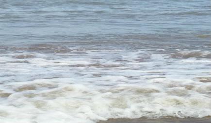 海洋氧氣流失 科學儀器如何幫助我們正視環境