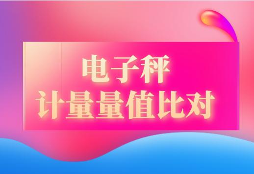 2019年福建省電子秤計量量值比對圓滿完成