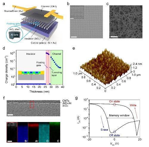 金属所等制备出柔性碳纳米管传感存储一体化器件