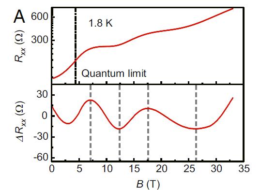中科大在新型拓撲材料外爾半導體研究上取得進展