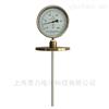 防腐型双金属温度计